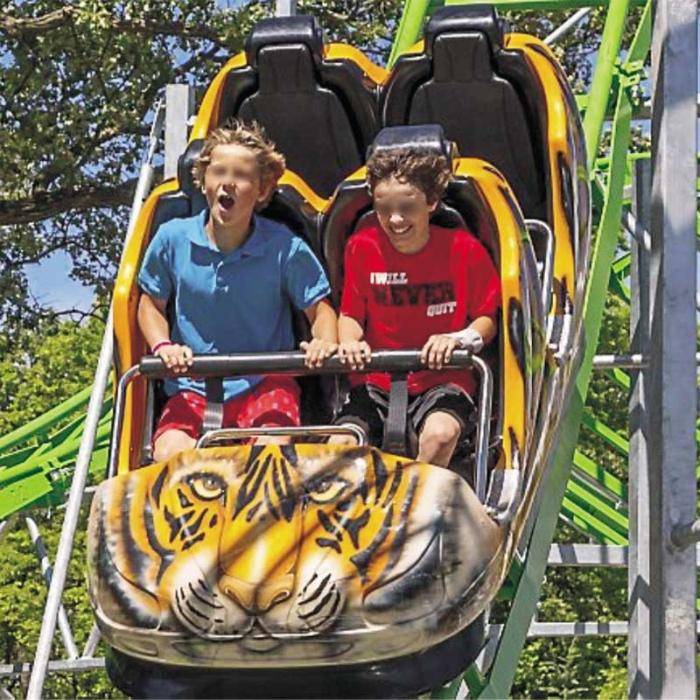 Fournisseur Roller Coaster